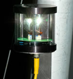 Orca Green Marine LED Steaming Masthead Light