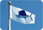 Taylor Made Products Carey Chen Offshore Boat Flags