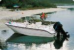 Whaler Style Inshore Fishing Boats Trailerite Hot Shot Semi-Custom Boat Covers by Taylor Made Products